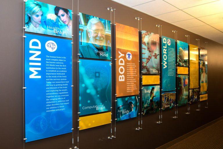 contemporary display